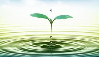 Sử dụng nước tiết kiệm trong dịp Tết Đinh Dậu