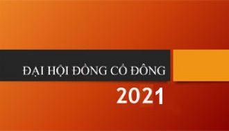 Đại hội Cổ đông thường niên 2021